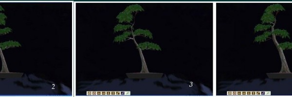 secuencia_virtualbonsai1